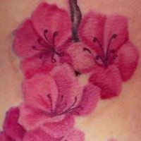 Blossom Branch Tattoo - Amy Ausiello