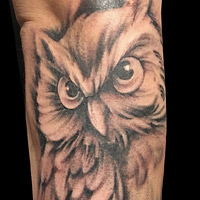 Owl Tattoo - Amy Ausiello